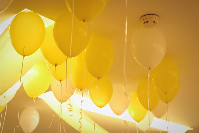 Yellow balloons Balloon Yellow No People Celebration Hanging Decoration Indoors  Low Angle View Fragility Event Large Group Of Objects Full Frame Helium Balloon Helium Ceiling Close-up Abundance Vulnerability