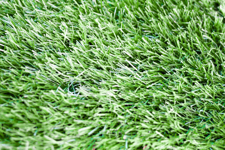 Backgrounds Close-up Day Full Frame Grass Green Nature No People Outdoors