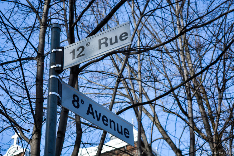 Low angle view of road sign against bare trees