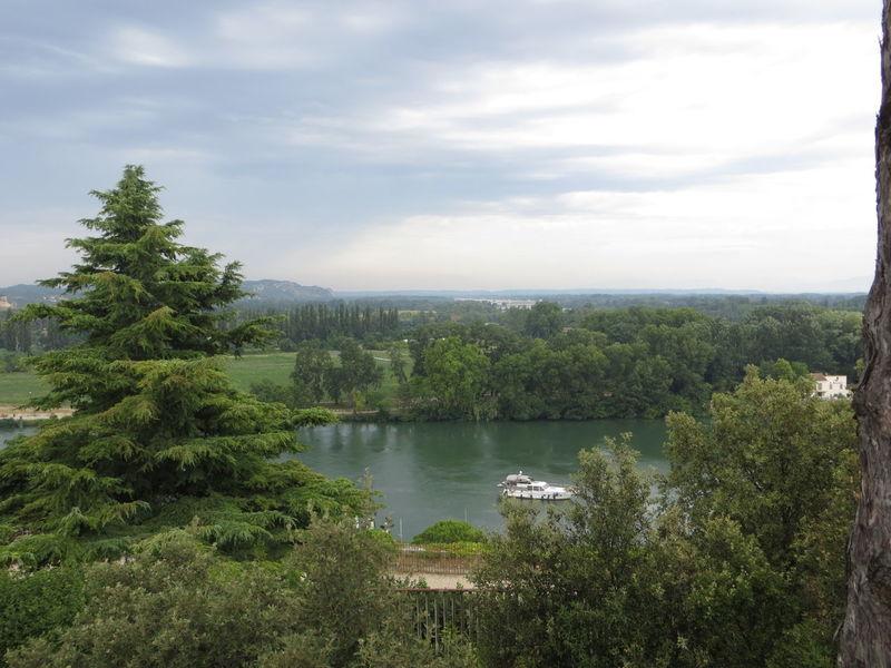 Avignon Avignon Avignon City River Boat Idyllic Green Trees And Sky Landscape Fantastic View