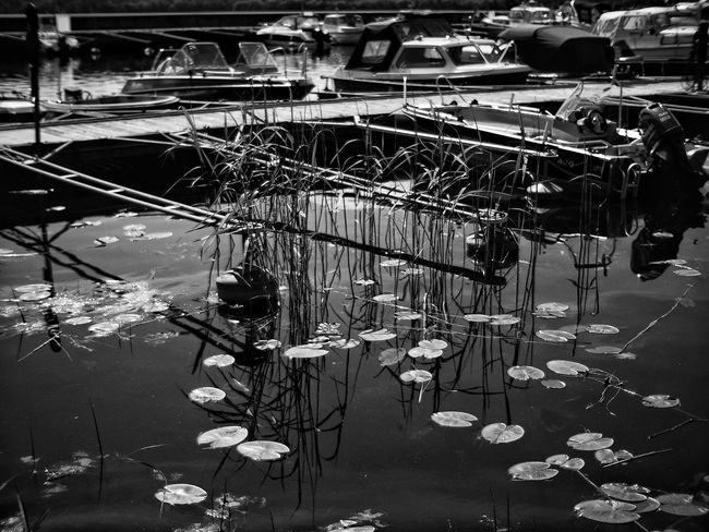 No People Water Indoors  Day Full Length Lake Grass Olympus First Eyeem Photo Freshness Blackandwhite Black And White Voigtländer Voighlander Voightlander Nokton 25mm F1:0,95 Summer Boat Boats Boats⛵️ Black & White Blackandwhite Photography Black And White Photography Blackandwhitephotography Water Reflections Water_collection