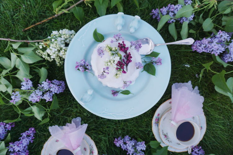 Directly Above View Of Lilac Flowers On Cake With Drinks Over Plants