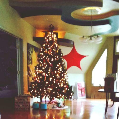 Christmas at dad's house Christmas Christmas Tree