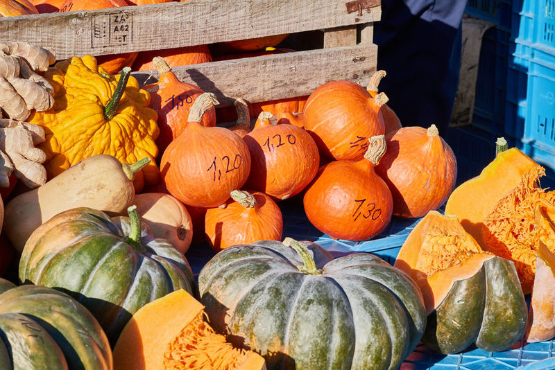 Green and orange pumkins on a local market offered for sale in crates Colorful Eatng First Eyeem Photo Freshness Green Color Healthy Local Landmark Low Carb Nature Nature_collection Orange Color Pumpkin RGanimals Vegetable