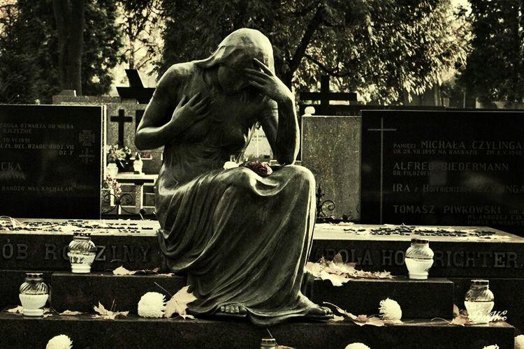 Cmentarz Cementery Cemetery Cemetary