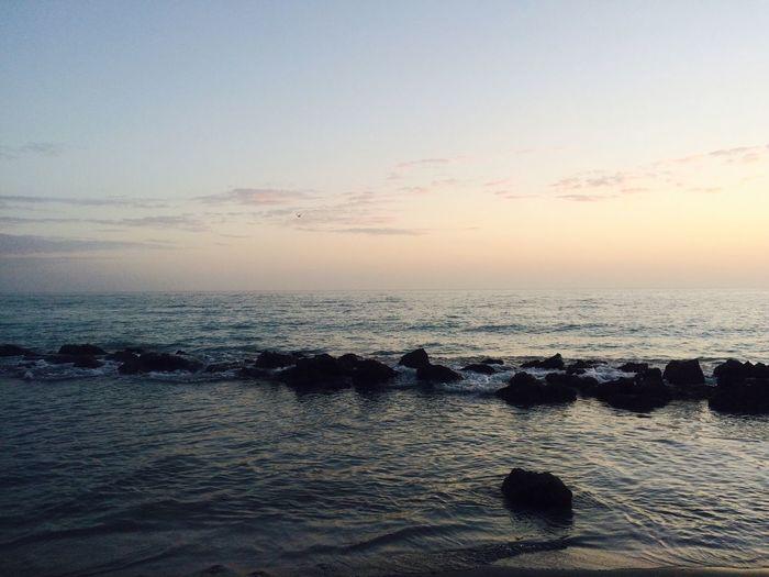 Florida Life Popular Photos Taking Photos No Edit/no Filter Todays Hot Look Sunset #sun #clouds #skylovers #sky #nature #beautifulinnature #naturalbeauty #photography #landscape Florida Skies ⛅️🌞🌊☁️ Pleasefollow