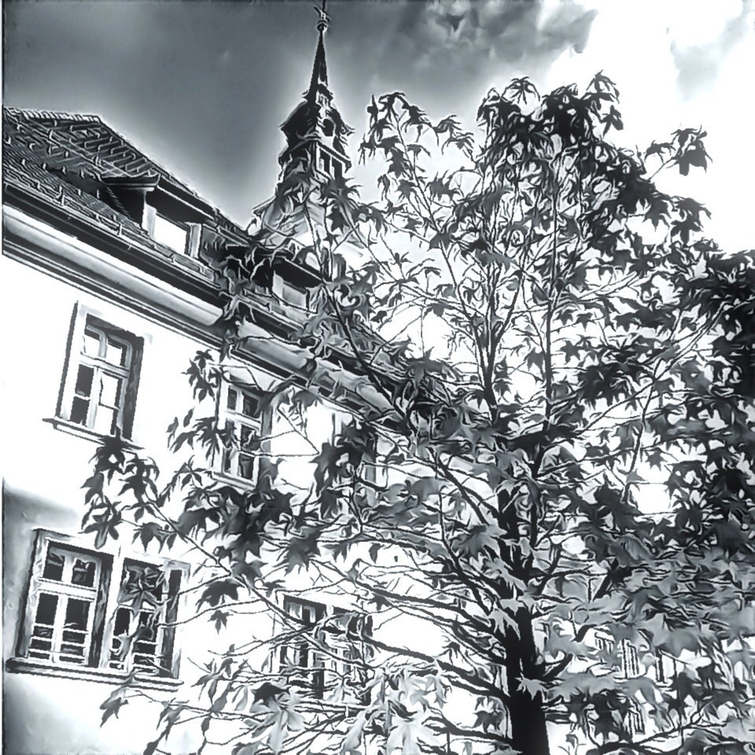 building exterior, low angle view, architecture, built structure, sky, religion, tree, church, place of worship, spirituality, branch, cloud - sky, cross, day, window, outdoors, cloud, no people