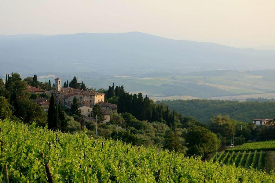 Tuscany Toscana Wine Tasting Vineyard Italia Italy❤️ Italianeography Landscape_Collection Landscape Italianlandscape Chianti Chiantishire Chianticlassico Chianti Area Ita