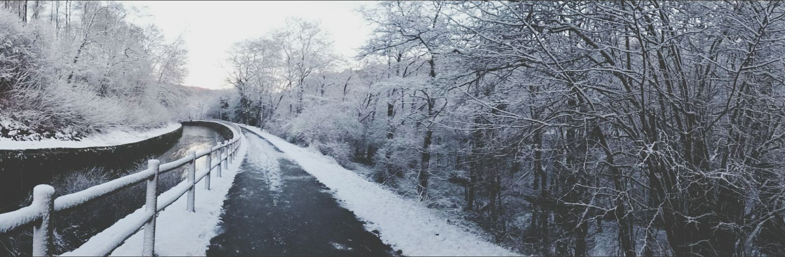 Snow Day White Cold Winter