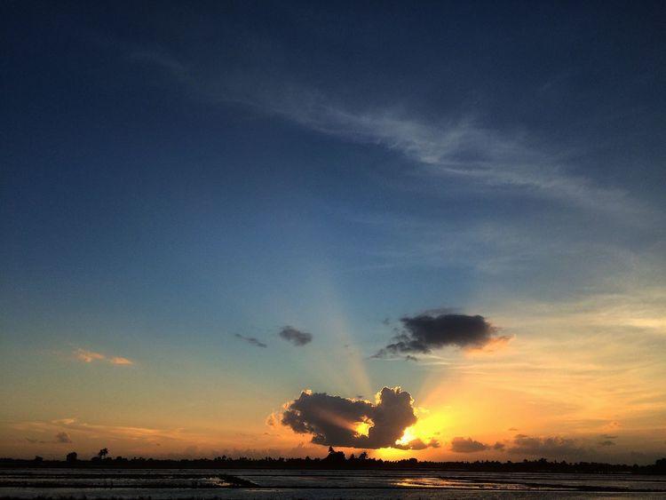 Rayoflight Sunset_collection