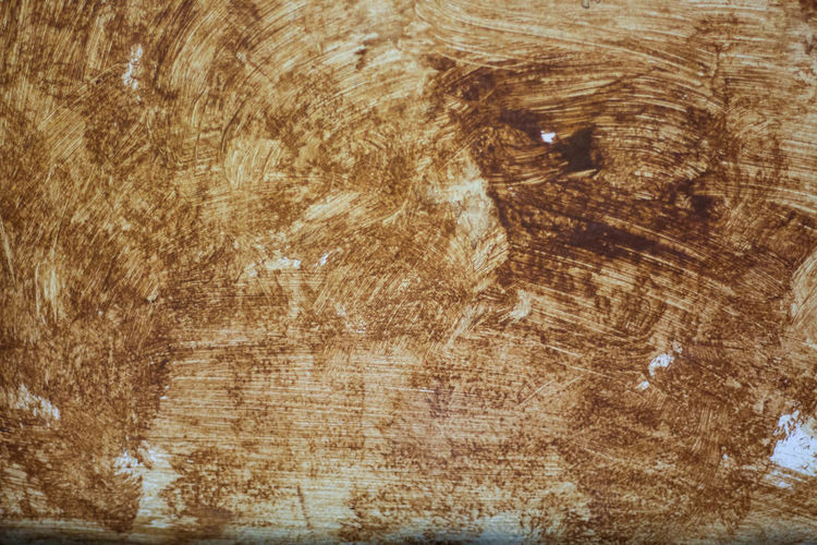 Wood background, retro pattern, detailed design Backgrounds Brown Directly Above Full Frame Indoors  Nature No People One Animal Textured  Tree Wood Wood - Material Wood Grain ศิลปะ สวยงาม เก่าเล่าใหม่
