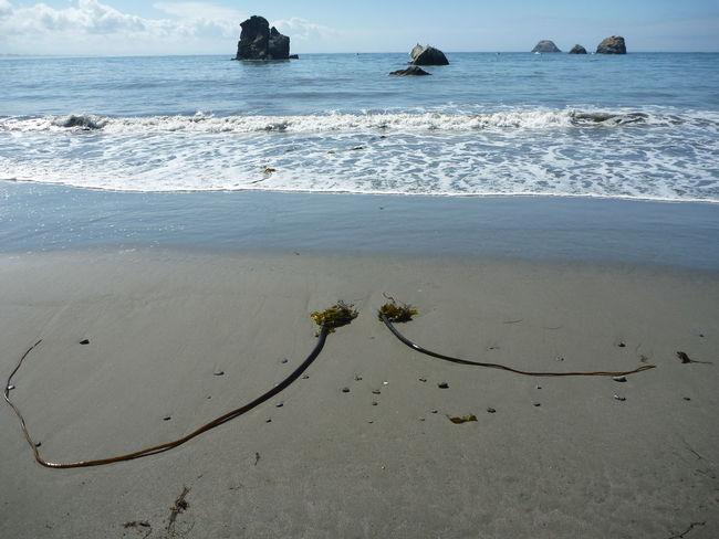 Beach Coastline Ocean S Sea Shore Surf Water