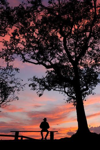 Silhouette man by tree against orange sky