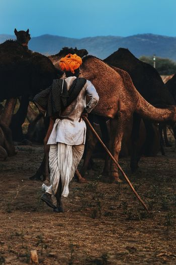 Man With Camel Standing On Field Against Sky