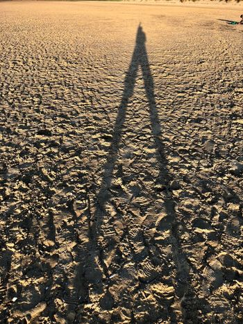 Bi-pod Human Shadow Shadow Sunlight Nature Land Focus On Shadow Lifestyles Long Shadow - Shadow Unrecognizable Person High Angle View Real People Leisure Activity Beach One Person