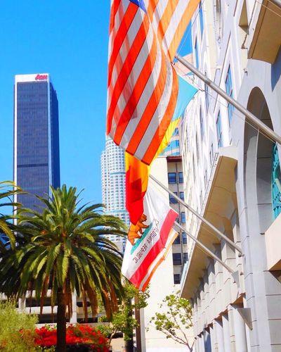 Fidm Flags American Flag Californiabear