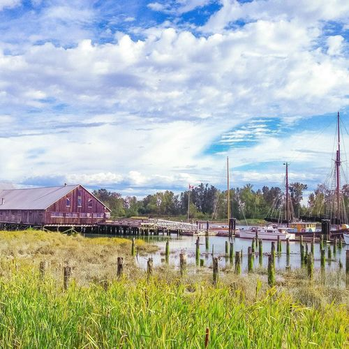 Peaceful scenery Landscape Scenery Shipyard Sky Cloud - Sky Cloud Tranquility Scenics Plant Travel Destinations Tranquil Scene Nature Outdoors Non-urban Scene Green Canada British Columbia Steveston
