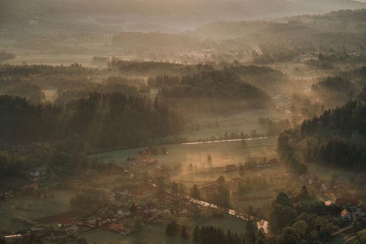 Foggy morning in poland