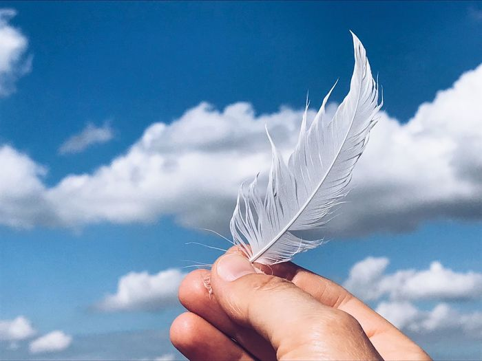 Close-up of hand holding feather against sky