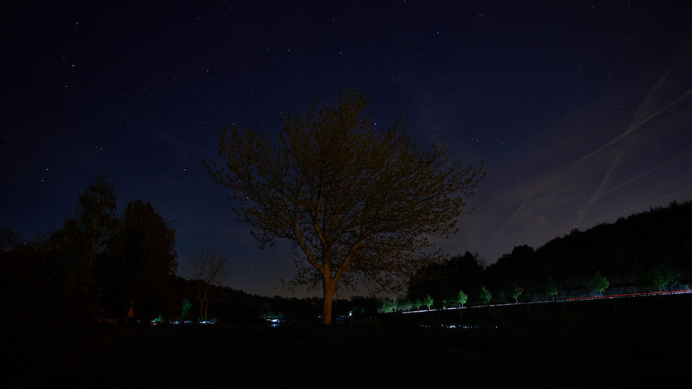 Night on river Moselle Astronomy Astrophotography Beauty In Nature Dark Idyllic Illuminated Infinity Landscape Long Exposure Majestic Nature Night No People Scenics Sky Star - Space Tranquil Scene Tranquility Tree