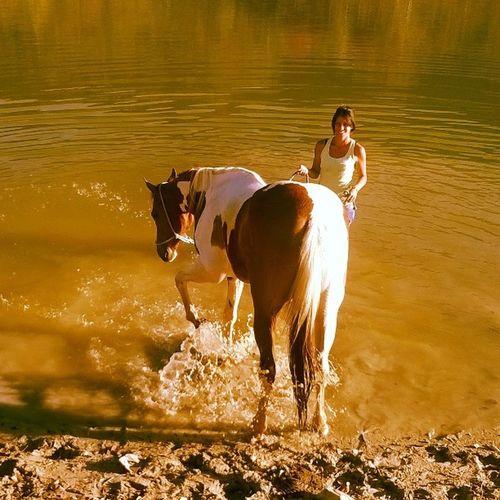 Realmente e simplesmente Spacial!!SáLinda Perfeita Cavalo Perfeiçõesdanatureza