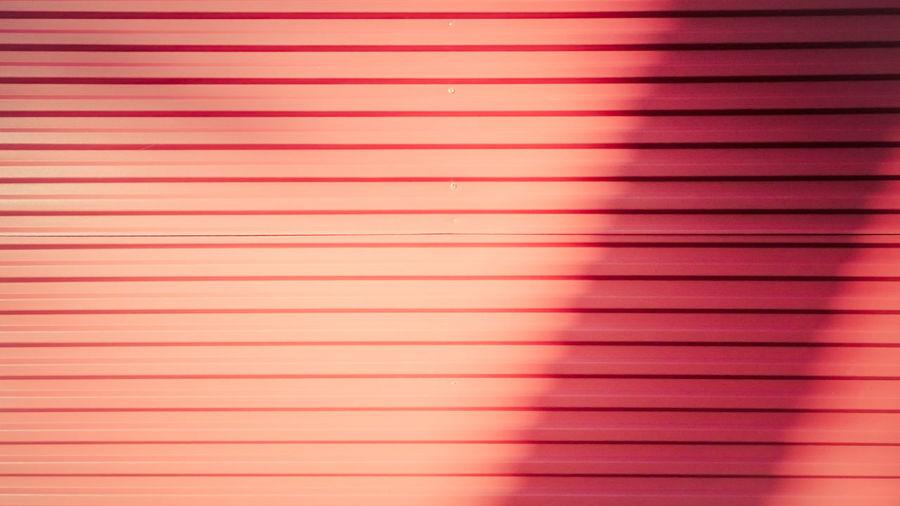 Full frame shot of pink shutter