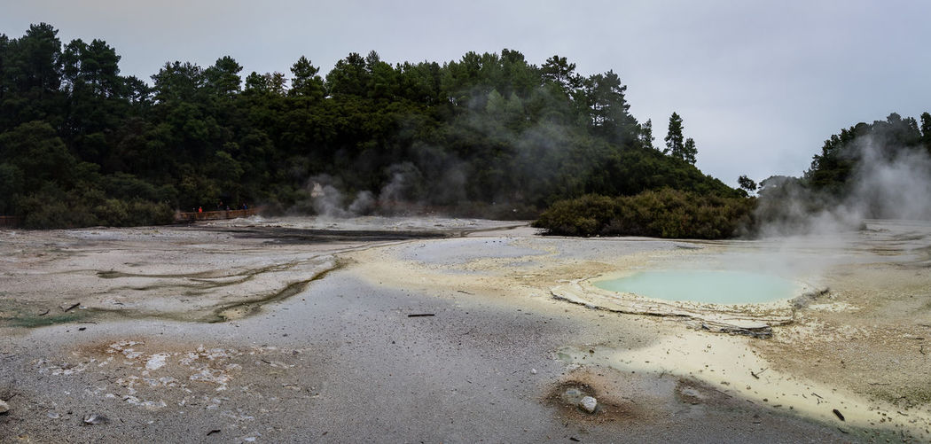 geothermal activity in new zealand Rotorua  Smoke Beauty In Nature Cloud - Sky Day Environment Geology Geothermal Activity Heat - Temperature Hot Spring Nature New Zealand No People Non-urban Scene Outdoors Physical Geography Plant Power In Nature Scenics - Nature Sky Smoke - Physical Structure Steam Tree Water The Great Outdoors - 2018 EyeEm Awards