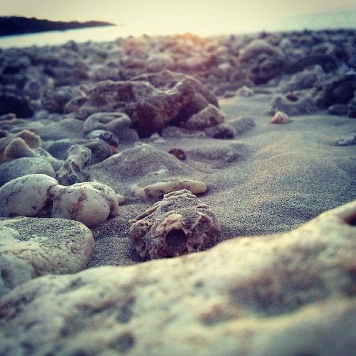 Kuinginkan mulut yang haus/ dari lelaki yang kehilangan masa remajanya/ di antara pasir-pasir tempat ia menyisir arus Ayuutami Saman Beach Bali kedonganan pantai pasir kerikil afternoonwalk