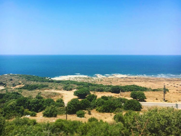 Mediterranean Sea Sea And Sky Nature Harmony Seascape Summertime Beauty In Nature Lebanon In Photos Sea Blue Green And Blue Green Nature Elevation Connected With Nature Horizon Over Water Landscape Curves And Lines Time To Reflect Summer Views Colors And Patterns Harmony Exploring Lebanon Beautiful Nature Perfect Day Land And Sea