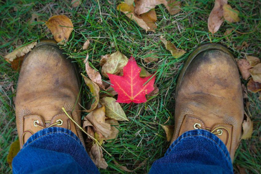 Fall Leaf Boots Denim