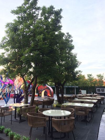 Plant Tree Table Seat Chair Nature Day Cafe Business Outdoors Sky Growth Architecture Restaurant Absence Sidewalk Cafe