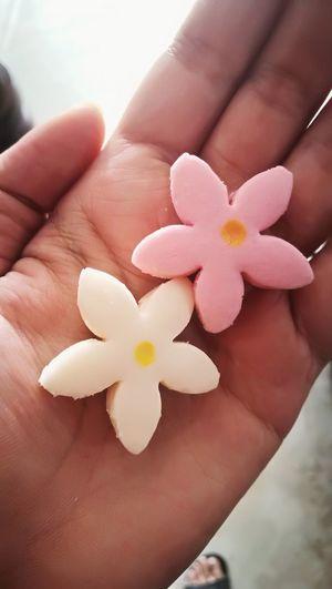 ขนมกลีบลำดวน ทำออกมาคล้ายดอกซากุระเชียวออเจ้า Thai Cookie Thaidessert Sweet Flower Kleeb Lamdaun