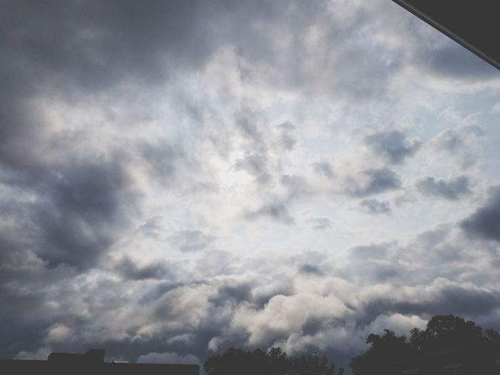 cool sky Beauty