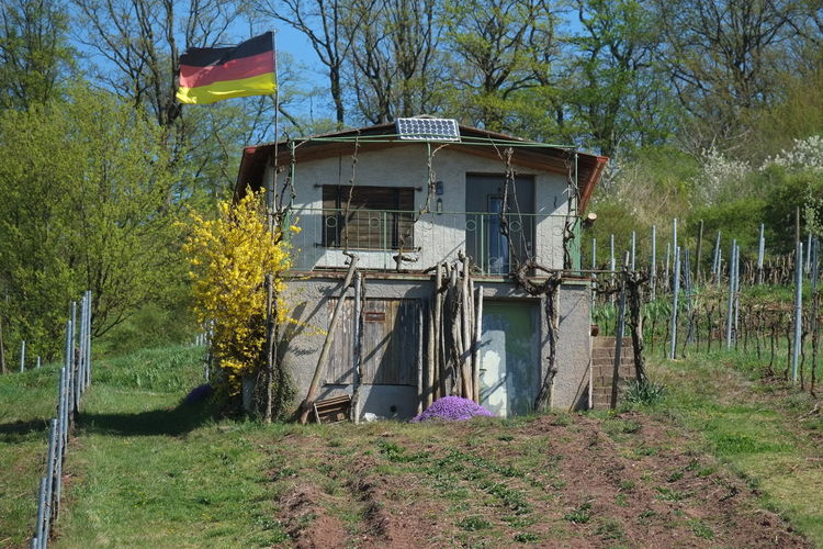 German Flag Hobby Gardening National Pride Leisure Gardener My Home Is My Castle Outdoors Spring Season Sunshine Vineyard Cabin Vineyard Landscape
