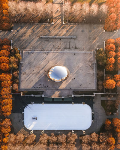 Beans for Winter Plant Tree Nature No People Autumn Day Directly Above High Angle View Lighting Equipment Outdoors Change Architecture Building Exterior Built Structure Illuminated Wood - Material Transparent Technology Sunlight Window Electric Lamp