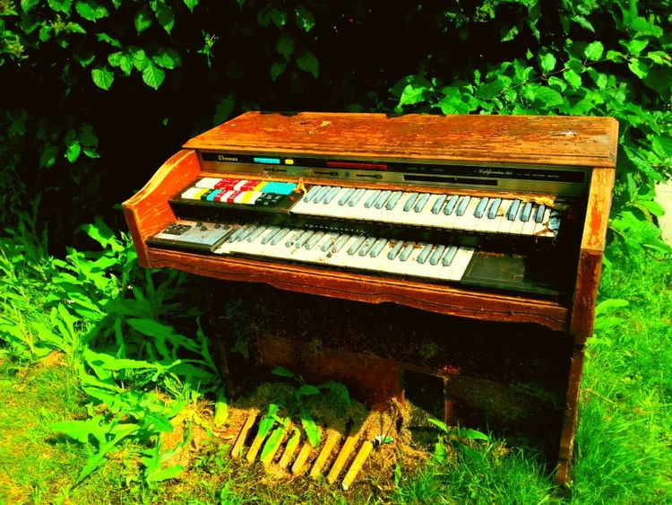 Blues Organ Outdoor Music Musical Instruments Left To Die Seeing Music And Earing Colors Gospel Sunshine