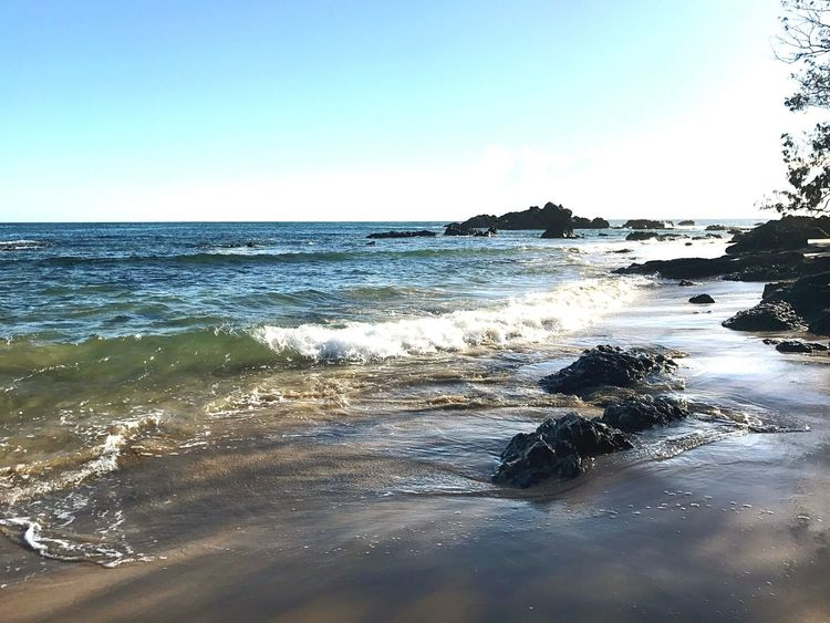 Sea Water Nature Beach Clear Sky Horizon Over Water Beauty In Nature Scenics Wave Day Outdoors Sky Sand Port Macquarie Summer Happiness Light Sun Photography Beauty Mother Nature Bay Rocks Shells Trees