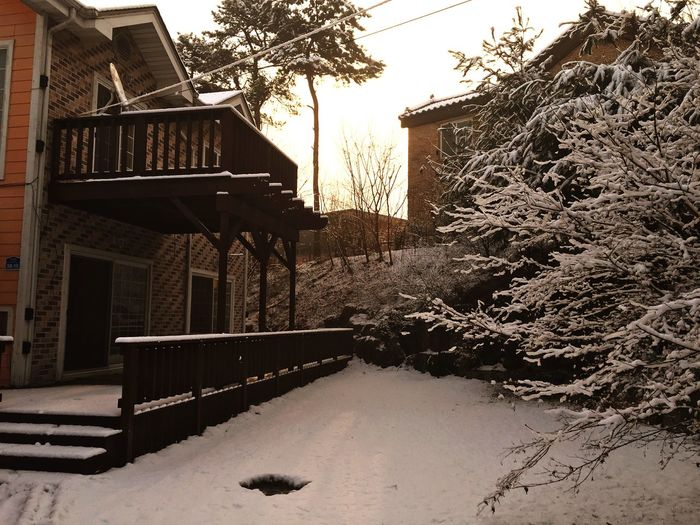 Snow ❄ Landscape Snow Covered Snow Covered Trees House Winter Outdoors Shades Of Winter