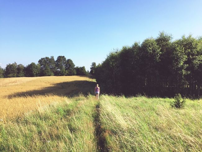Enjoying propabily the last hot and sunny days in this year Summer Summertime Sky Wandering Around Aimlessly Fieldscape Hot Day