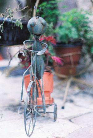 Analog Photography Film Photography Ant Insect Bycicle Bycicle Rider Bycicling Iron Sculpture Pot