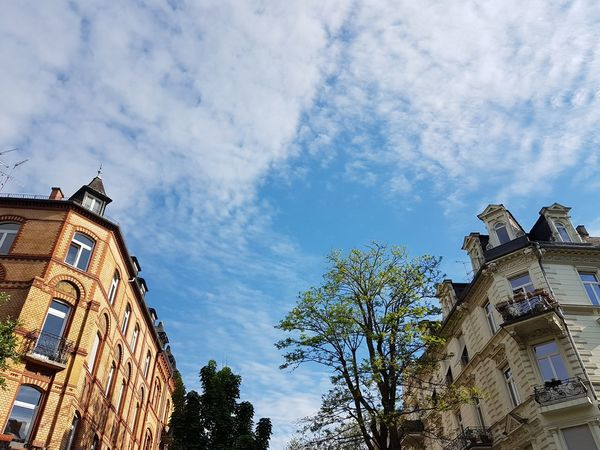Low Angle View Tree Architecture History Sky Outdoors Building Exterior Built Structure Day No People Germany 🇩🇪 Deutschland Tree Architecture Wiesbaden, Germany Cloud