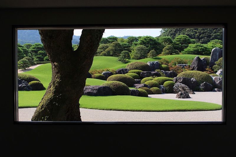 ADACHI MUSEUM OF ART 🇯🇵 Shimane Japanese Garden Window View Green Color Growth Plant Tree Garden Photography Art Arts Culture And Entertainment Japanese Style Tradition Window Enjoying The View Travel Photography Sightseeing EyeEm Gallery Museum Hello World My Point Of View Showcase July 足立美術館 島根県 日本庭園