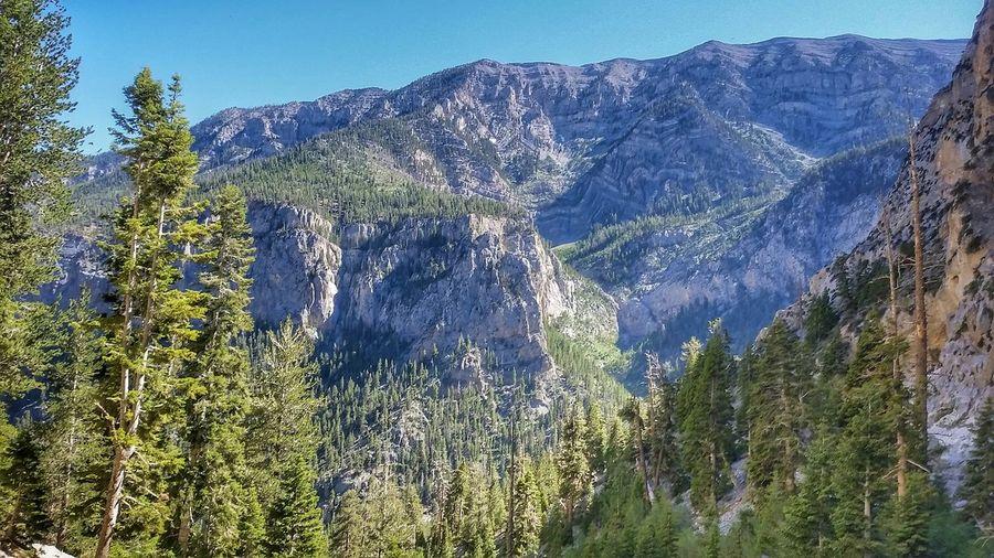 Nevada Mountains Mountain View Hiking Mountain Hiking Trees Nature