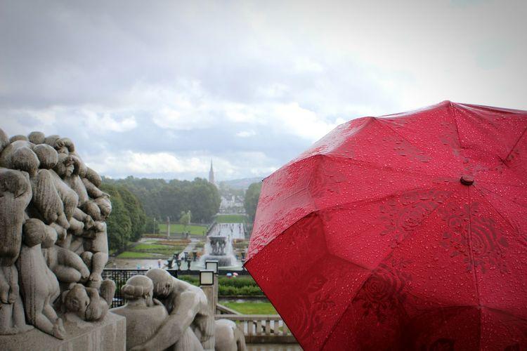 Rain Rainy Day
