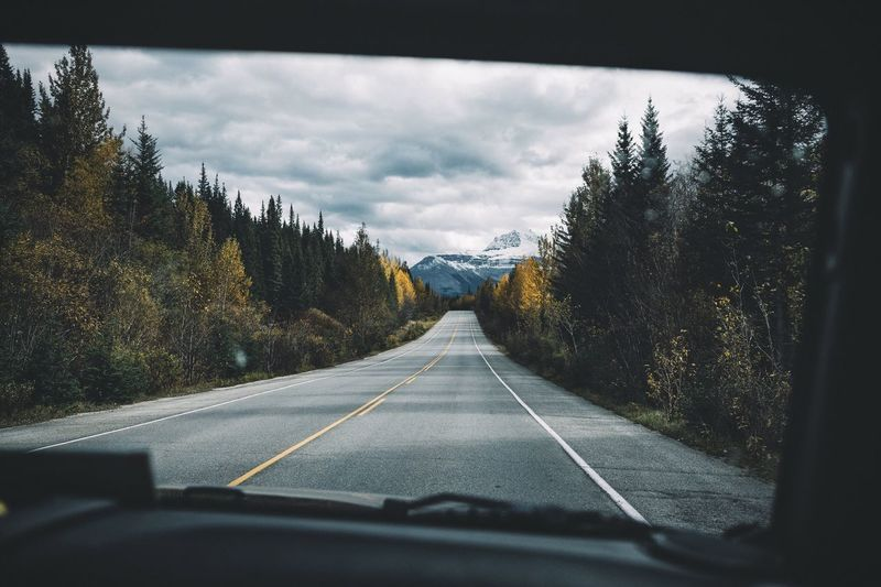 Roadtrip vibes Canada Roadtrip Vscofilm Transportation Road The Way Forward Car Tree Car Interior Vehicle Interior Windshield Day Sky No People Long Car Point Of View Nature White Line Land Vehicle Windscreen Beauty In Nature Outdoors