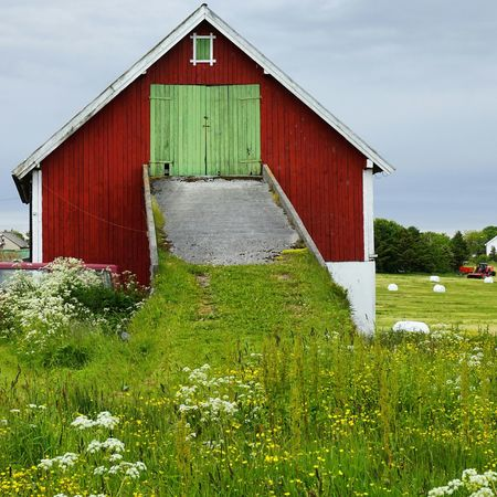 Countrylife. Nature Landscape Clouds And Sky Eye4photography  EyeEm Best Shots Architecture Rural Scenes Norway