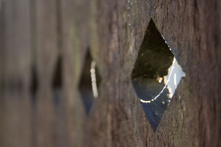 A hole in the fence. Wood - Material Close-up Day Nature Spider Web Sunny Day Fence Paling Quadrilateral Rectangle Outdoors
