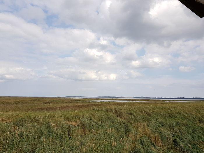 Zingst Baltic