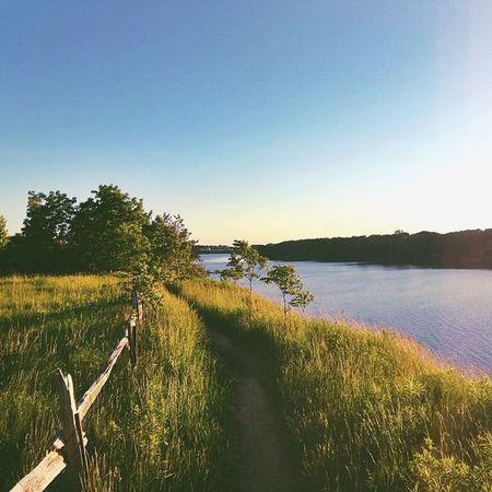 On the trail at Fanshawe Lake Ldnont