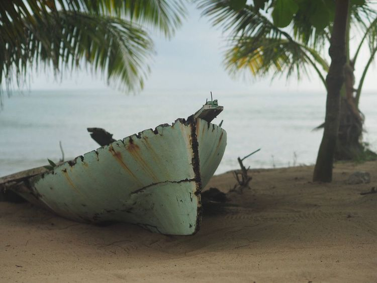 Boat between two palms Palm Tree Beach Nautical Vessel Nature Transportation Mode Of Transport Moored Water No People Outdoors Day Sea Sand Tree Sky Beauty In Nature caribbean sea